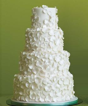 cake-brides-5.jpg